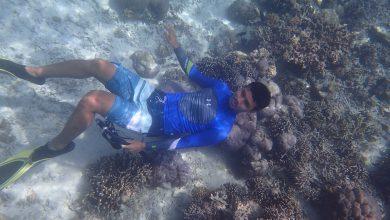 Photo of Bisakah Diving dan Snorkeling  Jika Tidak Bisa Berenang?