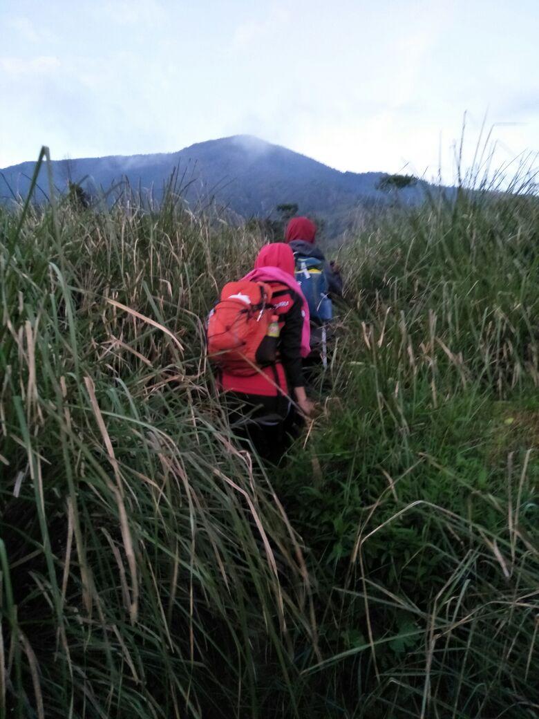 Pendakian Tektok Gunung Cikuray bersama Tektok Team 1