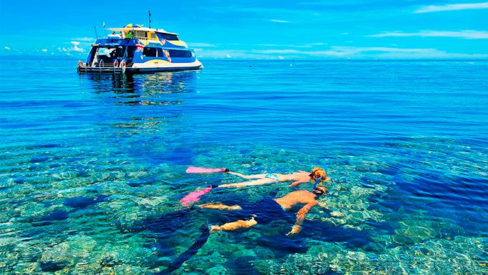 5 peralatan Snorkeling yang perlu diketahui saat skin dive 1